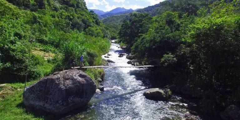 Día de Campo Junto al Río
