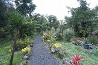 jardin-orquideas-valle-chirripo-1