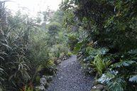 jardin-orquideas-valle-chirripo-11